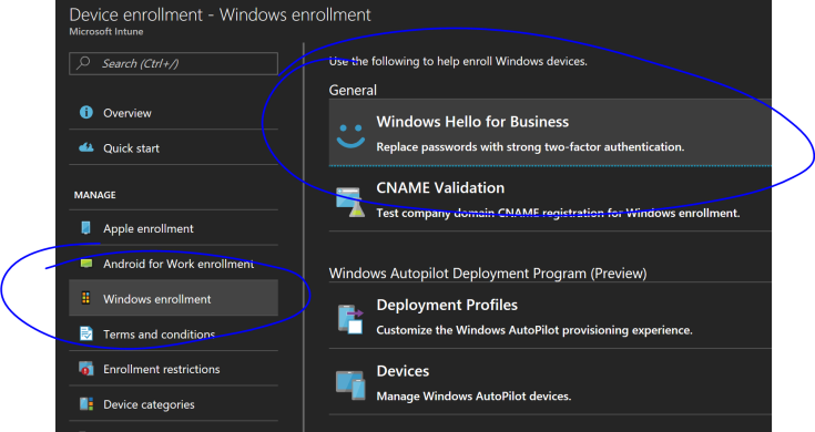 manage windows hello for business